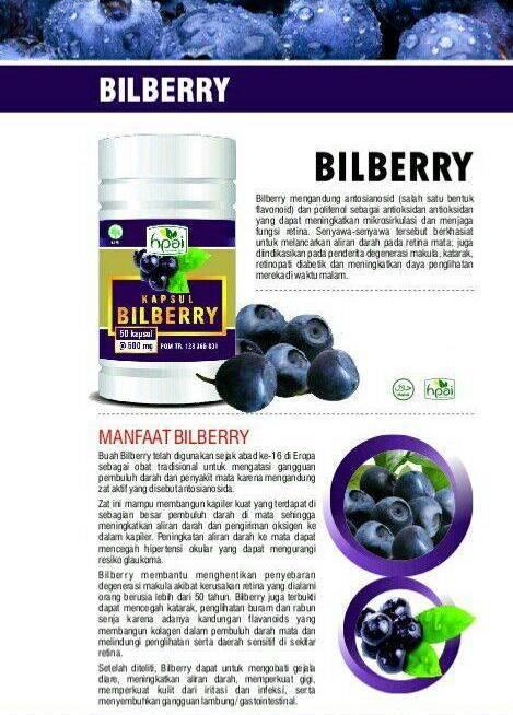 Agen Pengobatan Herbal Mata- Jual Kapsul Bilberry HPAI