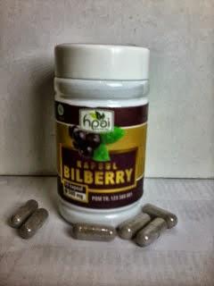 Agen Pengobatan Herbal Mata- Kapsul bilberry hpai jogja