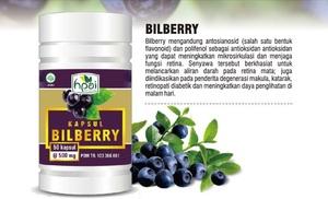 Agen Pengobatan Herbal Mata- reseller bilberry hpai